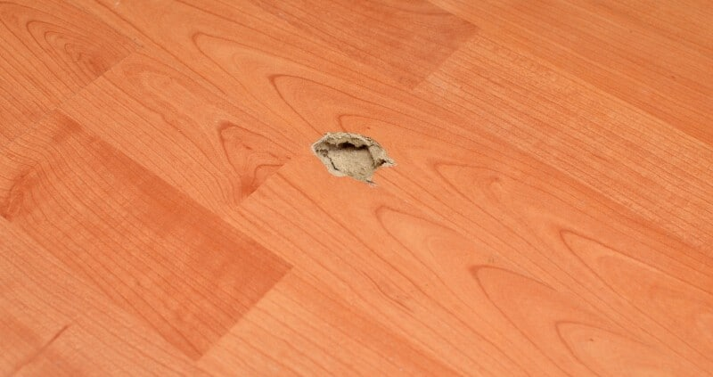Parquet scratches, holes and so on repair