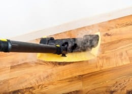 Steam cleaner on parquet?