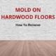 remove mold on wood floors