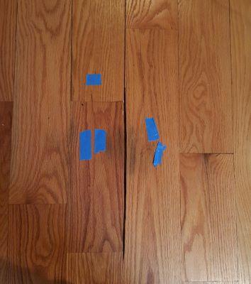 major cupping in wood floors