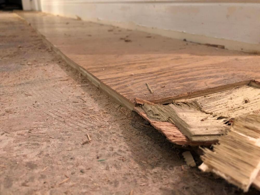 remove glue down wood floor