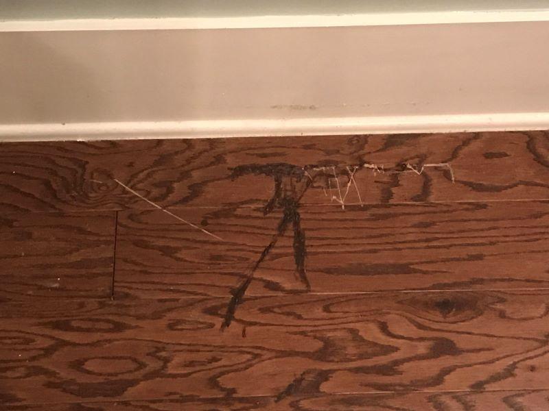 scratches on engineered hardwood
